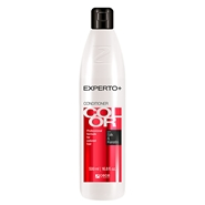 COLOR CONDITIONER WITH SILK & KERATIN de EXPERTO+