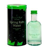 Spring Rain Water de Jimmy Boyd