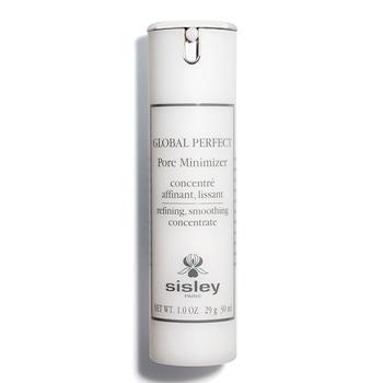 Global Perfect Pore Minimizer de Sisley