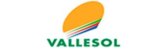 Imagen de marca de Vallesol